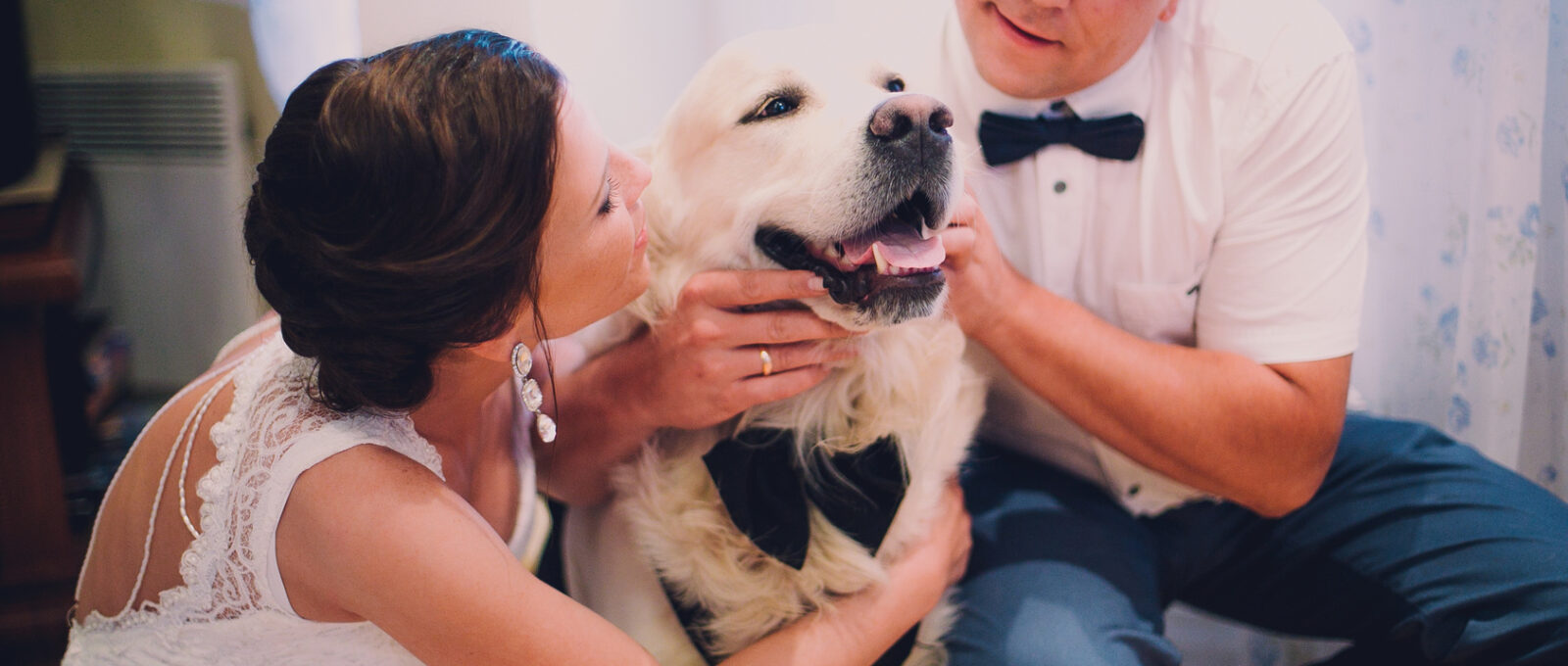 groom and bride playing with their dog labrador at home